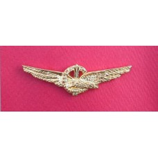 Italian R.S.I. Republican Air Force