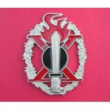 Italian R.S.I. Mountain Pioneer Assault Badge