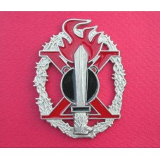 Italian R.S.I. Mountain Pioneer Assault Badge